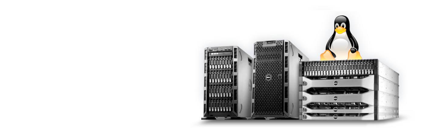 Server/Hardware.